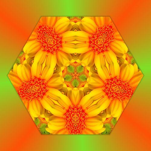 Mandala Floral (2)