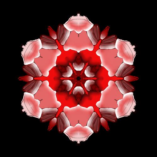 mandala rožinė,harmonija,švelnus,meditacija,meditacinis,juda,švelnus,tylus,minkštas,poilsis