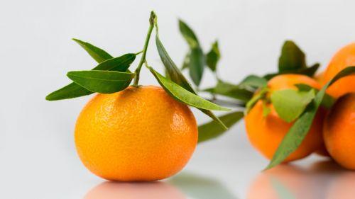 mandarin clementine fruit