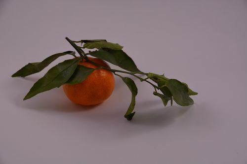 mandarinas,vaisiai,raudona,skonio,citrusiniai,vaisių medžiai,gamta,į pietus,galia,raudoni vaisiai,maistas,desertas,maisto produktas,vaisių sodas