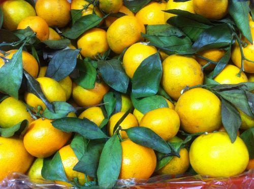 mandarins fruit tasty