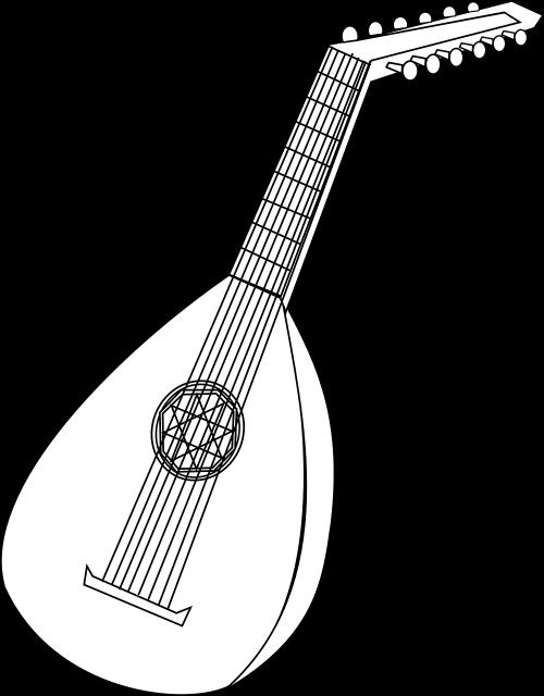 mandolin instrument lute