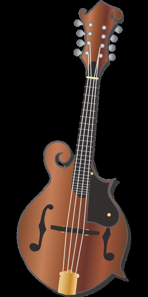 mandolin music bluegrass