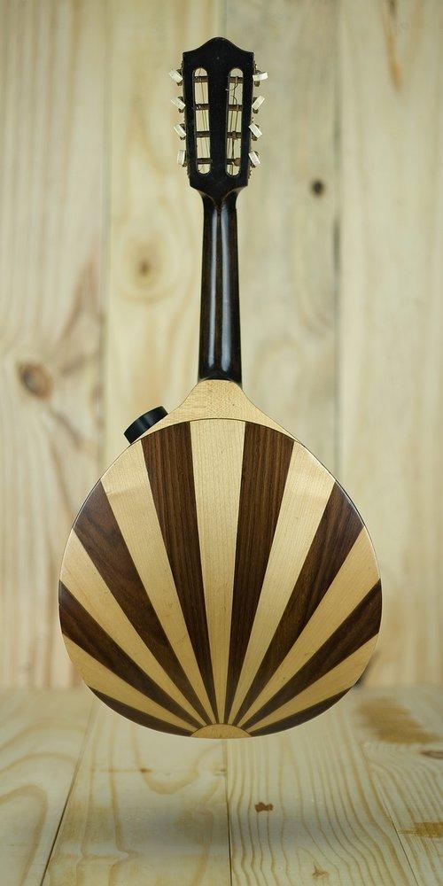 mandolin  acoustic  musical