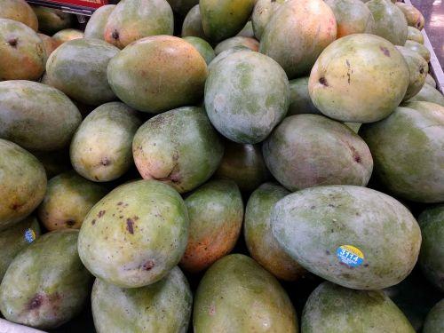 mango tropical fruit