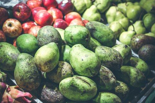 mango  mango fruits  mangoes