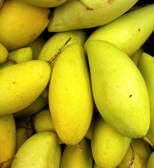 Mango Pile Up