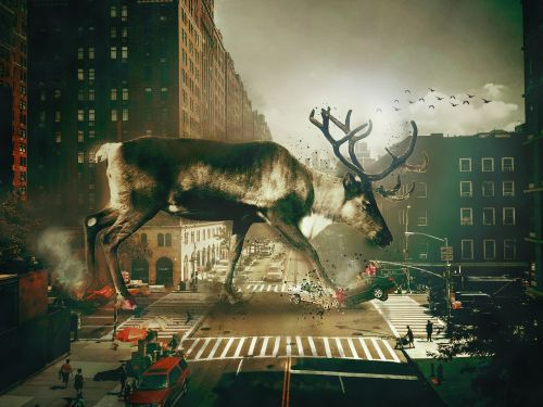 manipulation animals city