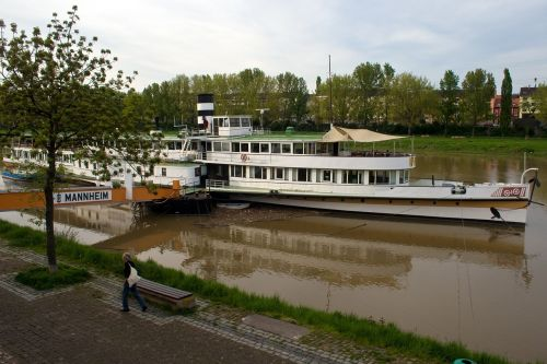 mannheim neckar ship