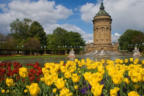 mannheim water tower flowers