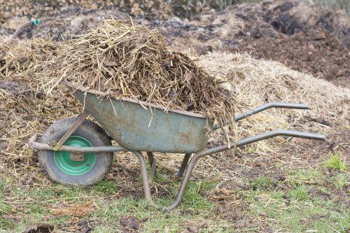 manure wheelbarrow wheelbarrows