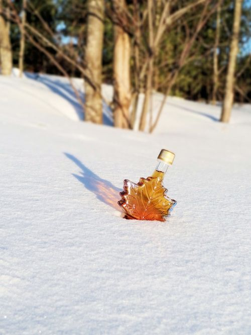 maple syrup snow