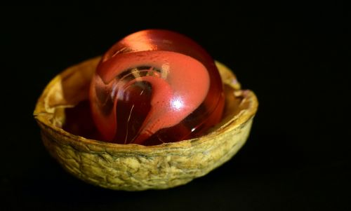 marble nutshell walnut shell