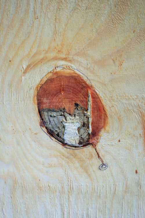 Mark In Wood Panel