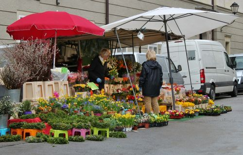 market market day flowers was