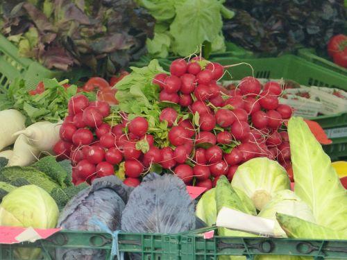 market vegetables garden