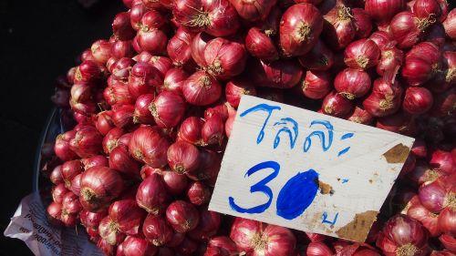 market onion price
