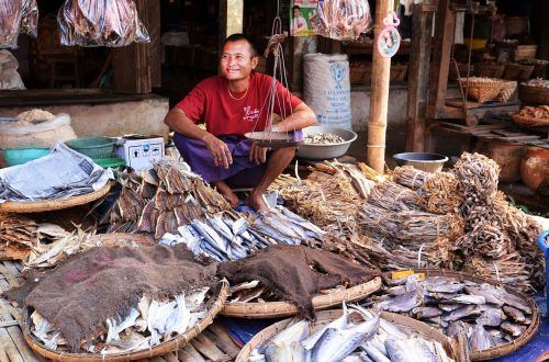 marketplace seller fish seller