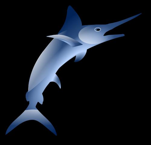 marlin swordfish fish
