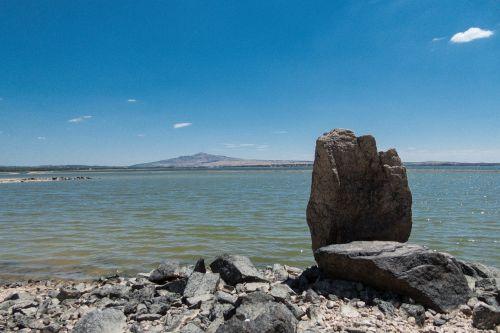 marsh sea rock