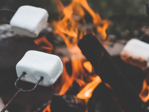 marshmallow marshmallows campfire