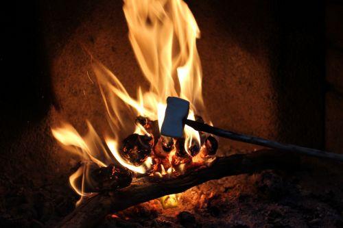Marshmallow In Fire Roasting
