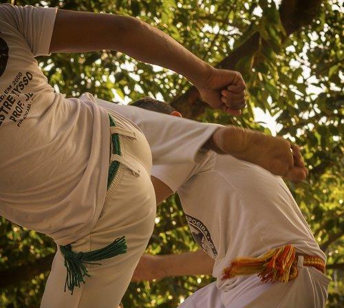 martial art  sport  popular culture