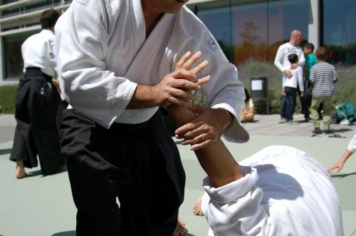 martial arts aikido sports