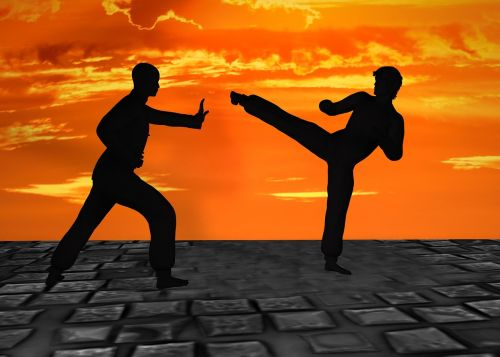martial arts silhuetten muay thai