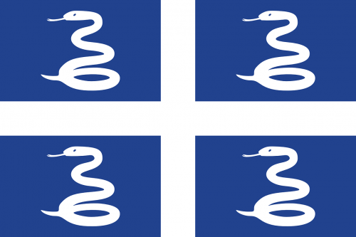 martinique flag national flag