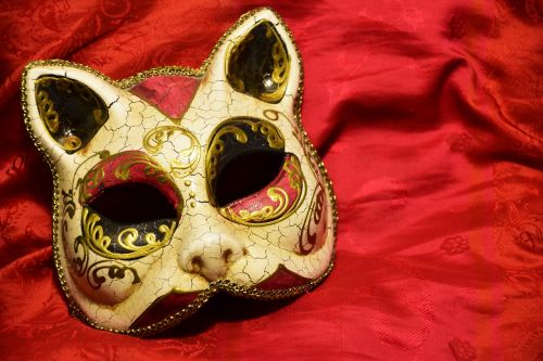 mask cat carnival