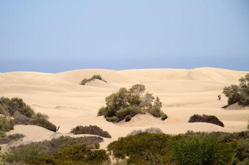 maspalomas dunes sand dunes
