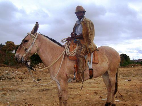 mass cowboy vale do jequitinhonha araçuaí