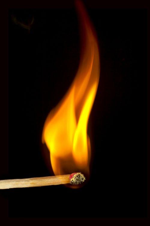 rungtynės,Ugnis,Uždaryti,deginti,degtukai,įsižiebti,liepsna,makro,siera,nudegimai,lengvesnis,rungtynių galva,šviesa,uždegimas,geltona,lazdos,dūmai,makro nuotrauka,datailaufnahme