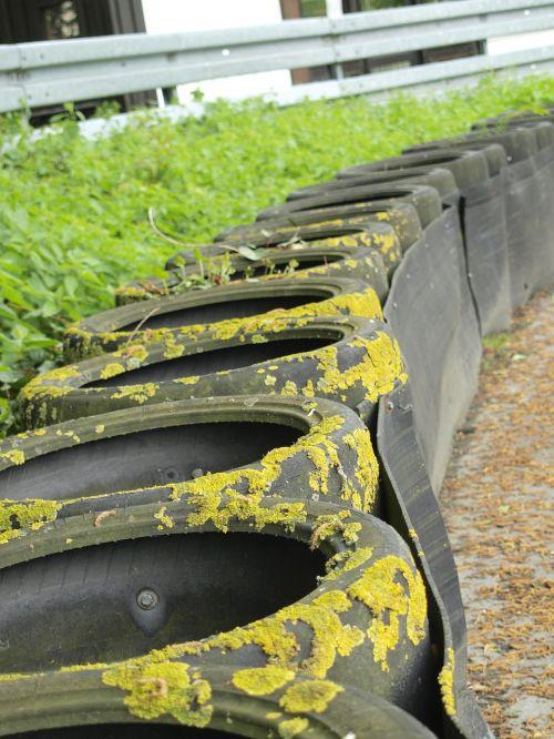 mature environment auto tires