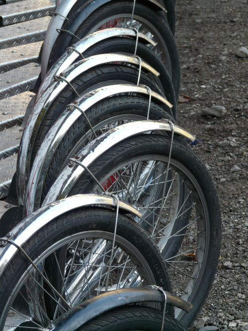 mature wheels spokes