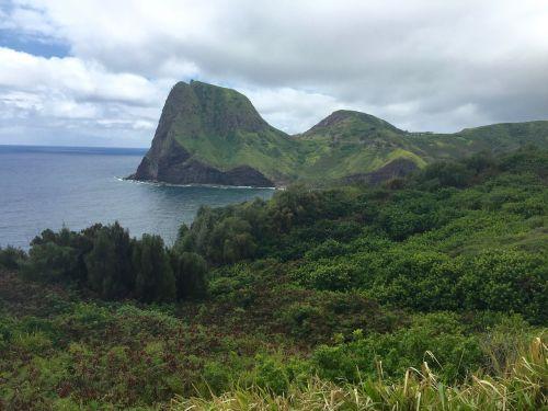maui hawaii ocean