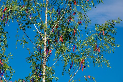 maypole  spring  tradition