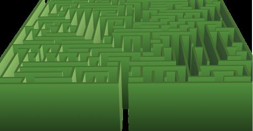 maze hedge maze green