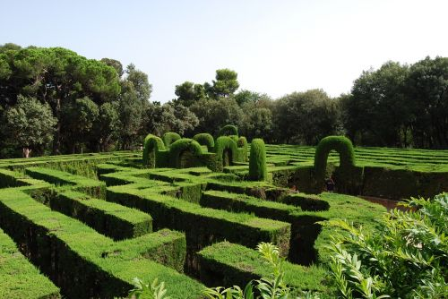 maze green labyrinth
