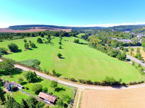 meadow aerial view drone