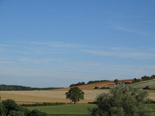 meadows field sky