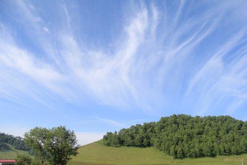 pievos,baltas debesys,švarus dangus,debesies vaizdas,oras,diena,vasara,geras oras