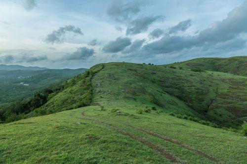 meadows landscape greenery
