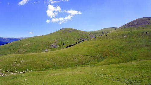 meadows mountain green