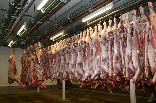 mėsa,jautiena,mėsininkas,skerdyklos