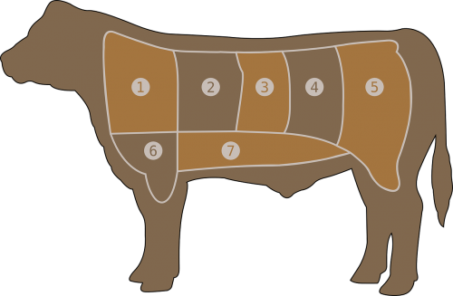 meat chart beef butcher