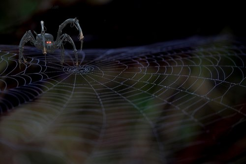 mechanical spider  spider web  fantasy