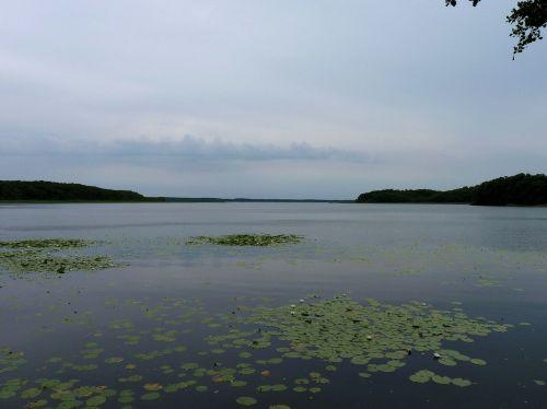mecklenburg mecklenburgische seenplatte nature