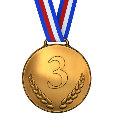 medal bronze award